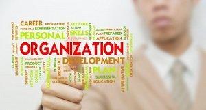 steps-which-help-to-create-internet-marketing-plan_niltm_1