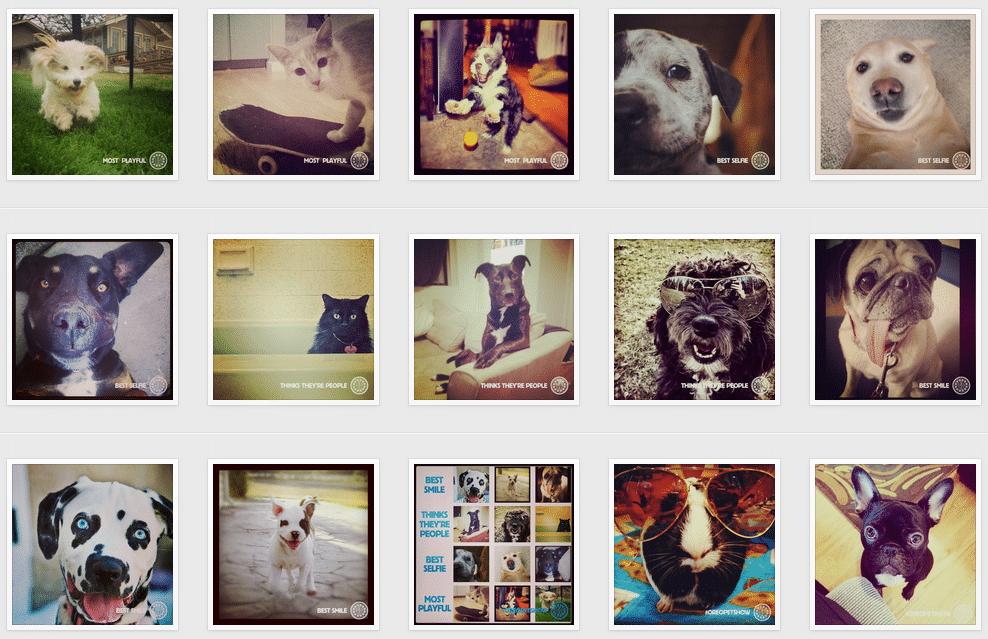Screen Shot 2013-07-12 at 1.07.58 PM